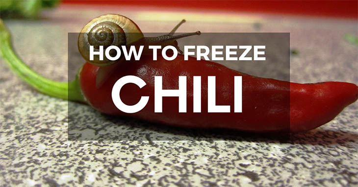 can you freeze chili