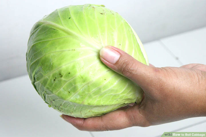 choose cabbage