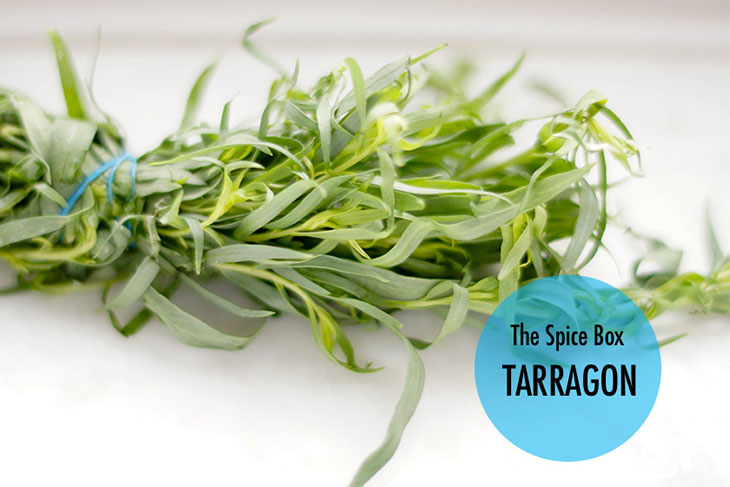 tarragon substitute