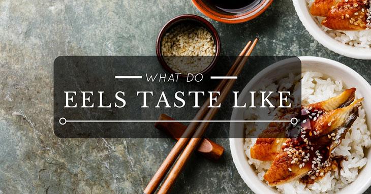 What Does Eel Taste Like
