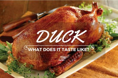 what does duck taste like
