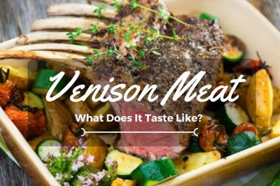 what does venison taste like