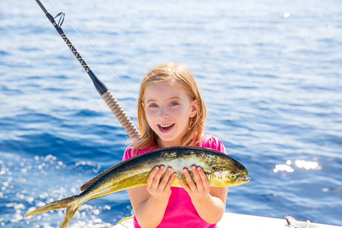 what does mahi mahi taste like - advantages of mahi mahi
