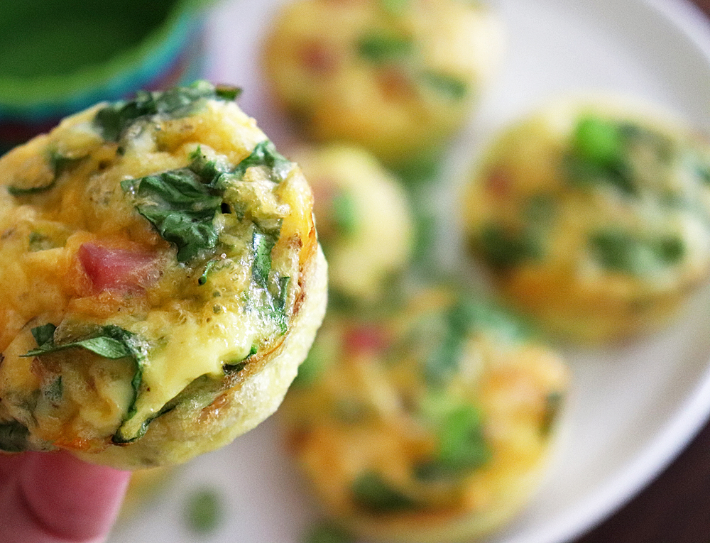 Ham and Spinach Egg Muffins HERO